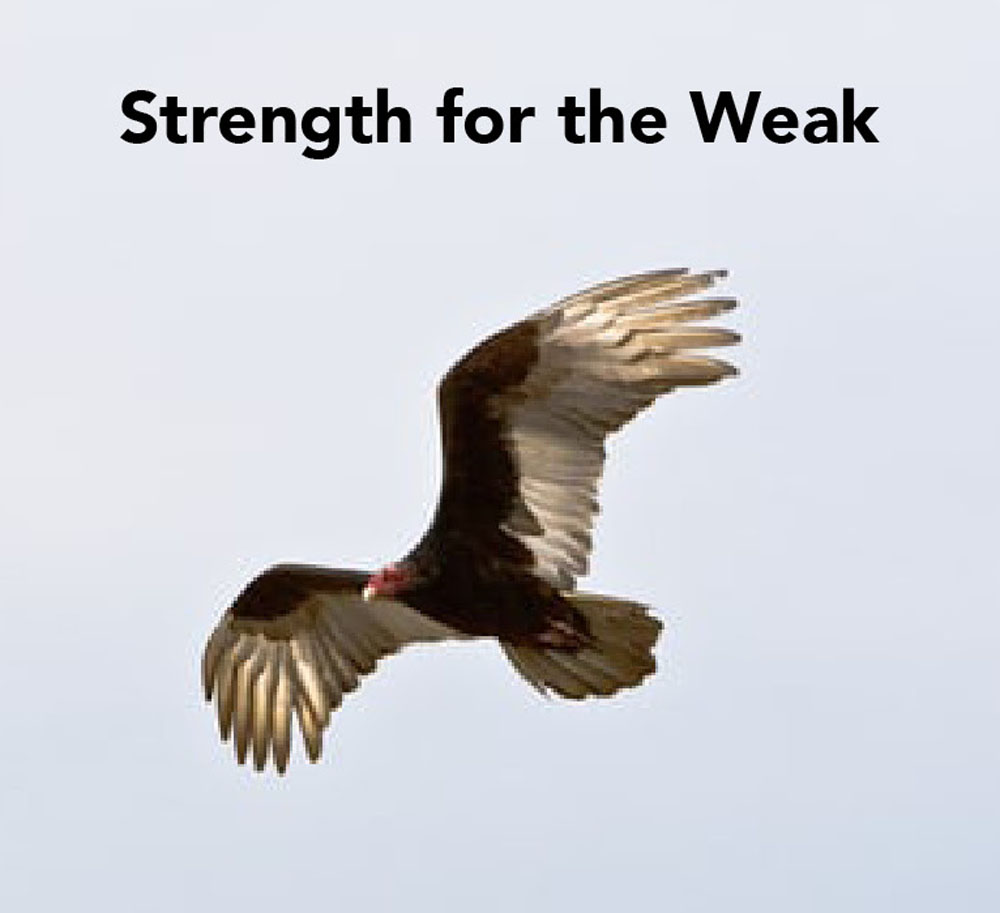 Strength for the Weak